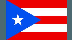 Referendum on Puerto Rico Statehood